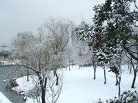 雪に覆われた徐家匯(シュージャーフイ)公園