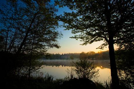 霧に浮かぶ幻想的な夜明けのシャトー・ド・ラ・ヴェルリー