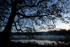 シャトー・ド・ラ・ヴェルリーの夜明け前