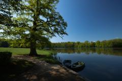 湖につながれたボート