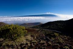 ハワイ島マウナケア中腹にあるオニヅカ・ビジターセンター周辺の風景、マウナロア