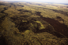ハワイ島空撮、うすく堆積した草の層