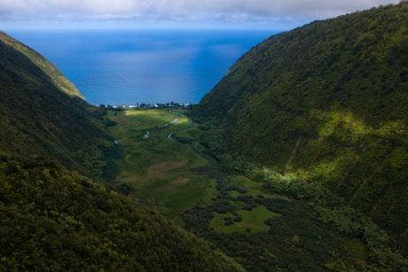 ハワイ島空撮、ワイピオ渓谷、最奥部から海岸の切り込み方向を俯瞰
