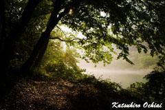 光明、奥多摩、逆光、雨の撮影、霧、湖、落合勝博