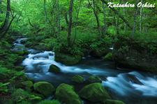 清々風々、奥入瀬渓流、小林孝男、リアリティを追求する構図法、落合勝博