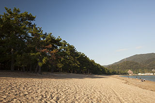 気比の松原,日本三大松原,福井県