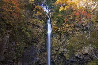 岐阜県郡上市・阿弥陀ヶ滝、東海一の名爆、日本100名爆、紅葉、2012年