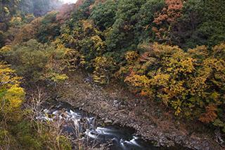 奈良県宇陀市、紅葉、川、2012年