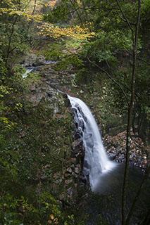 三重県名張市、赤目四十八滝、2012年、紅葉、不動滝