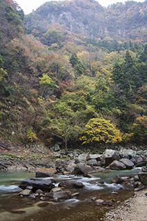 三重県名張市、2012年、紅葉、香落渓
