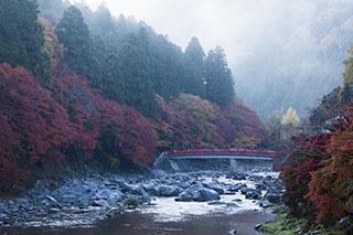 愛知県豊田市、香嵐渓、2012年、紅葉、
