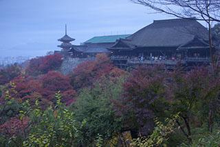京都府京都市、清水寺、夜明け、紅葉、2012年、清水の舞台から飛び降りる