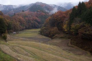 京都府京都市、大原野、無名の棚田、大阪と京都の境界付近、紅葉、2012年