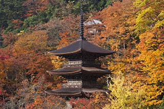 京都府舞鶴市、金剛院、平清盛ゆかり、紅葉、2012年、三島由紀夫、金閣寺、三重塔