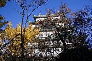 愛知県名古屋市、名古屋城、2012年、紅葉