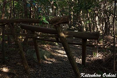 長崎県対馬市、八丁角、オソロシドコロ、浅藻、天道信仰の聖地、天道法師、パワースポット、龍良山