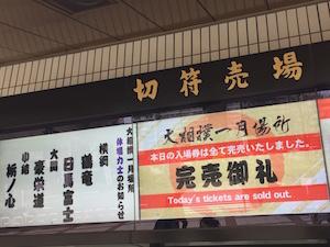 大相撲初場所13日目