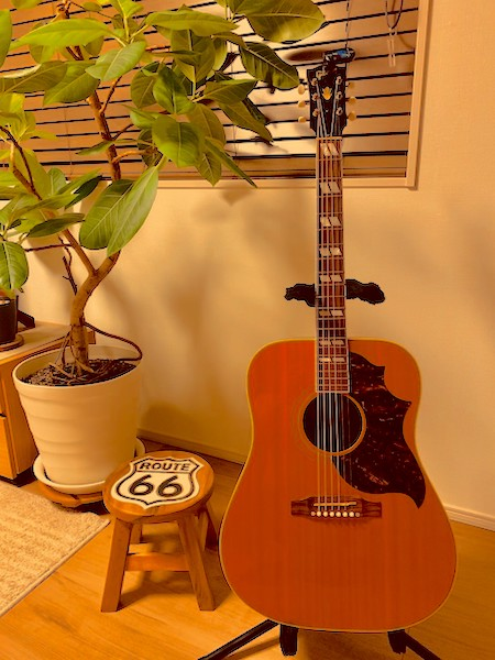 Gibson Sheryl Crow Country & Western