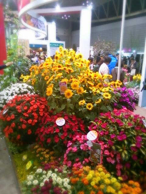 aviary_1461489024031.jpg