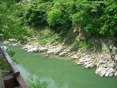 天竜峡の新緑2