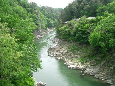 天竜峡の新緑3