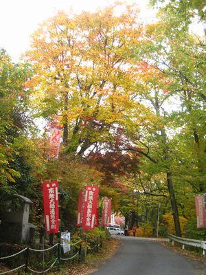 天龍峡遊歩道紅葉
