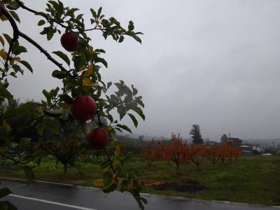 柿とりんご