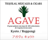 Kyoto Agave