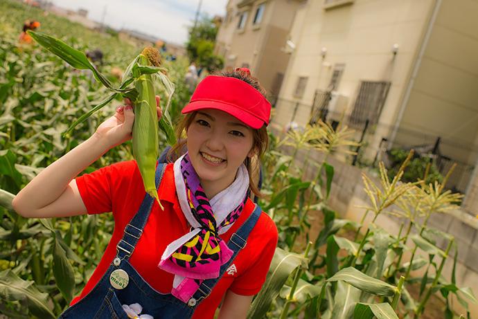160703tm_corn-031.jpg