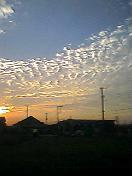 20061011_234699.jpg