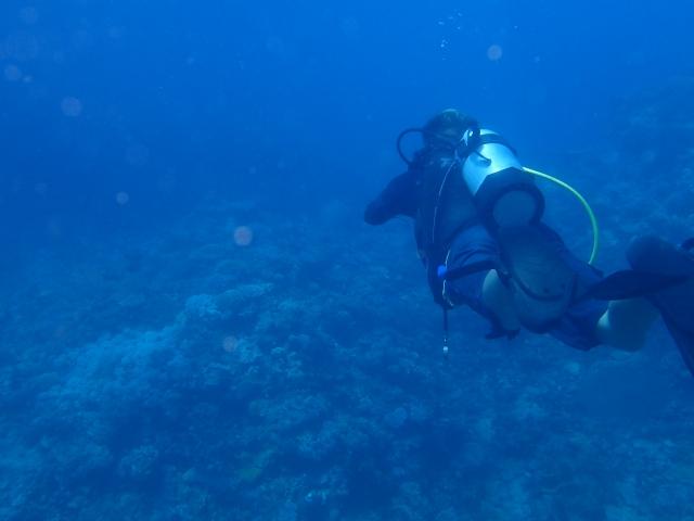 那覇市プライベートダイビング体験ライセンス取得未経験者初心者高齢者にオススメ