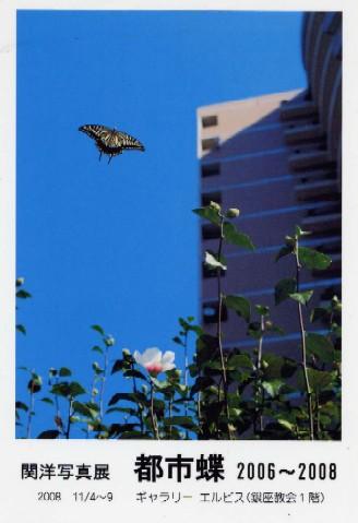 関洋写真展「都市蝶 2006-2008」