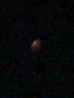 SN3L0538.jpg