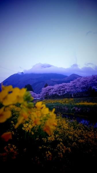 murata_voicepic.JPG