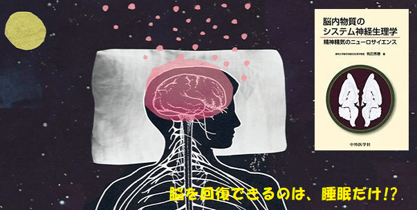 脳の掃除06