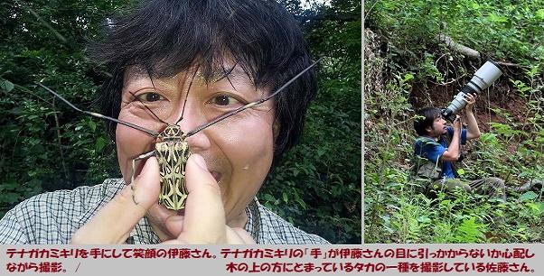 虫好き-3