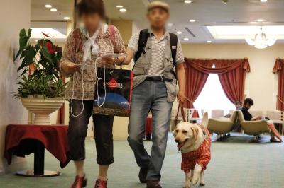 案内する盲導犬