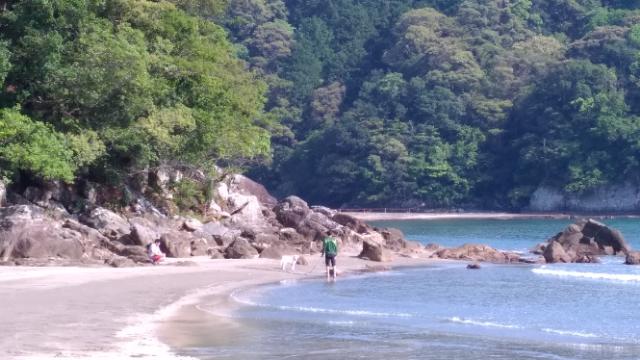 海デビュー白浜海岸1.jpg