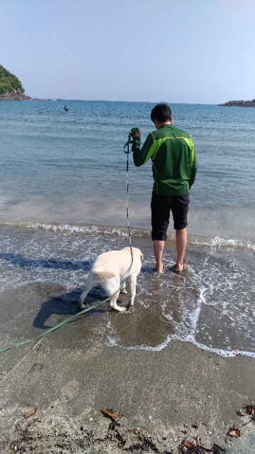 海デビュー白浜海岸4.jpg