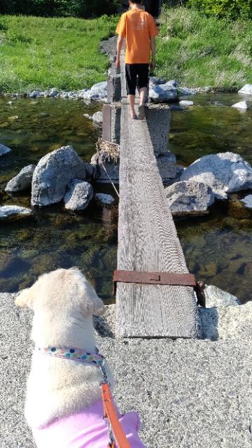 ゆらゆら一本橋7.jpg