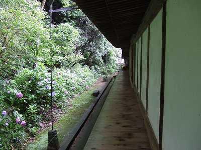 本堂裏 廊下