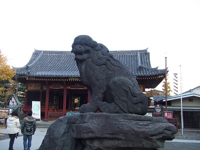 浅草神社の狛犬