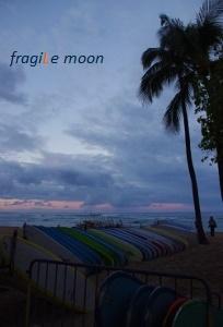 早朝のビーチ サーフボード