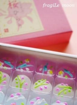 桜ひらりS