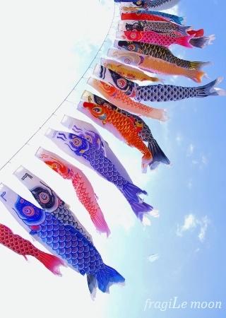 五老ヶ岳鯉のぼり