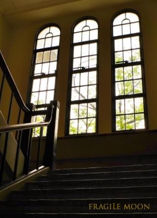 音楽館・階段窓x