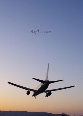 伊丹・飛行機撮影6