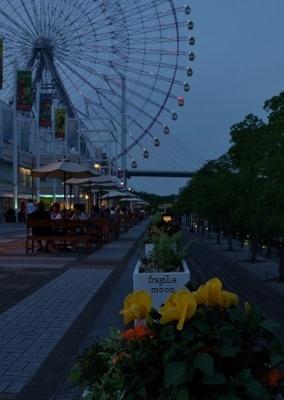 大阪港2S