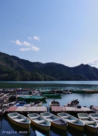 銀山湖2017春