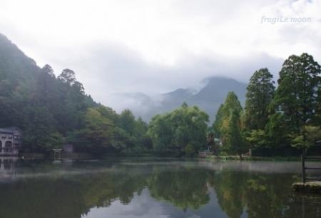 金鱗湖2017.11-1